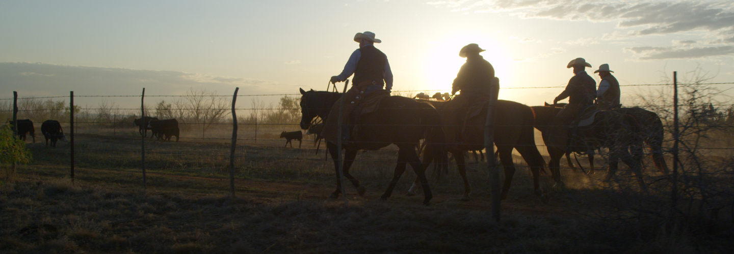 ranching-header-image.jpg